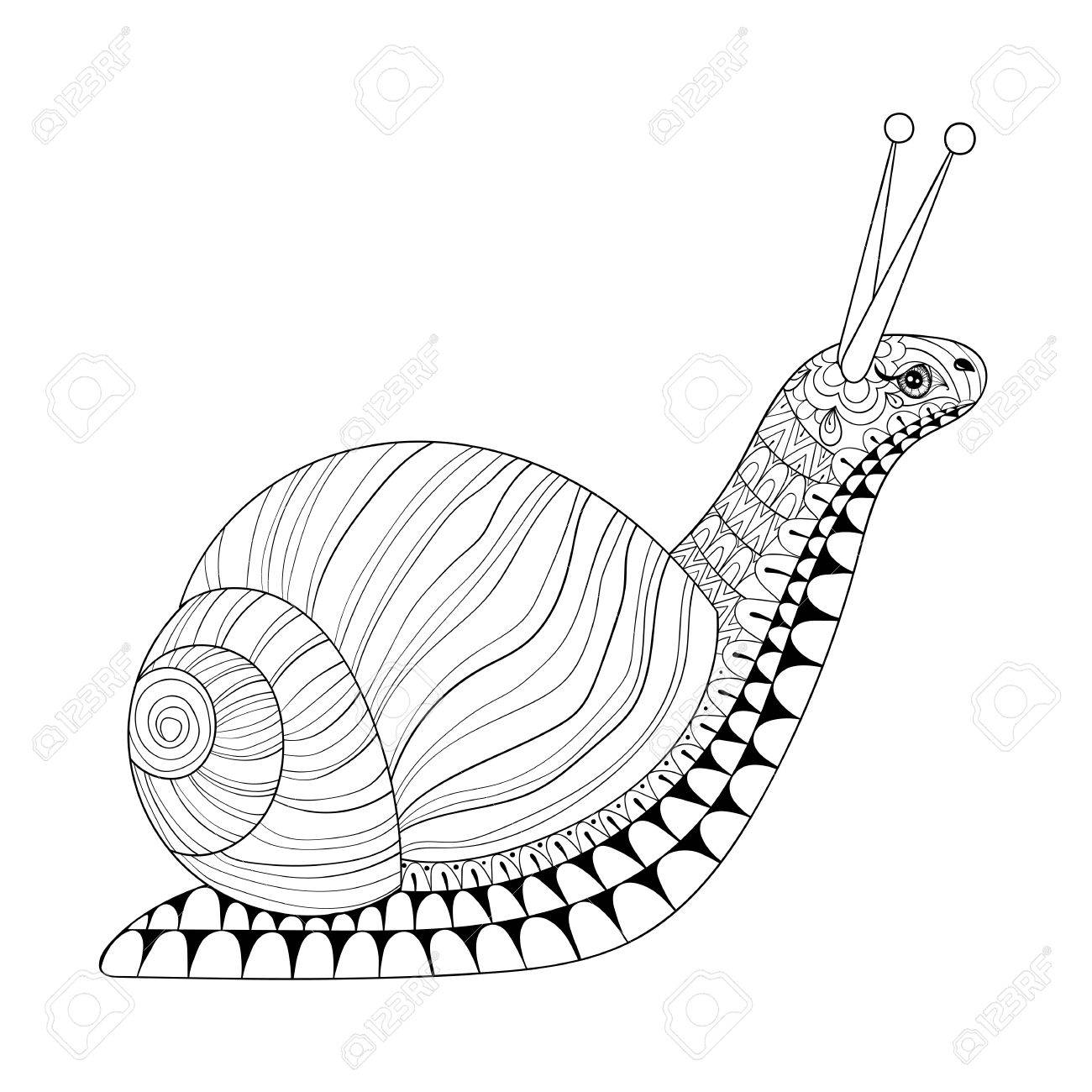 hand drawn snail for anti stress colouring pages post