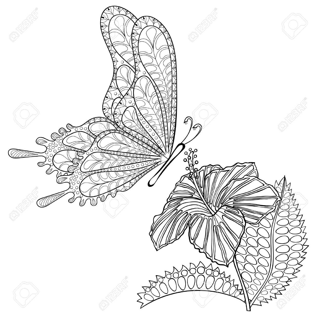 Dibujado A Mano Vuelo De La Mariposa Tribal Y Flor De Hibisco De ...
