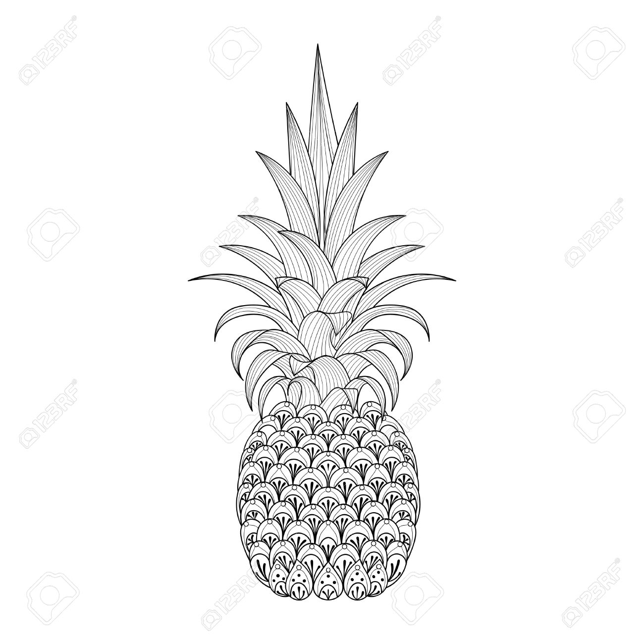 Hand Drawn Ornate Pineapple Tribal Exotic Fruit For Adult Anti Stress Coloring Pages Ethnic