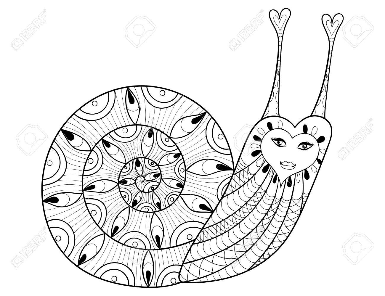 vector snail for adult coloring pages art therapy ethnic patterned t shirt print - Art Therapy Coloring Pages Animals