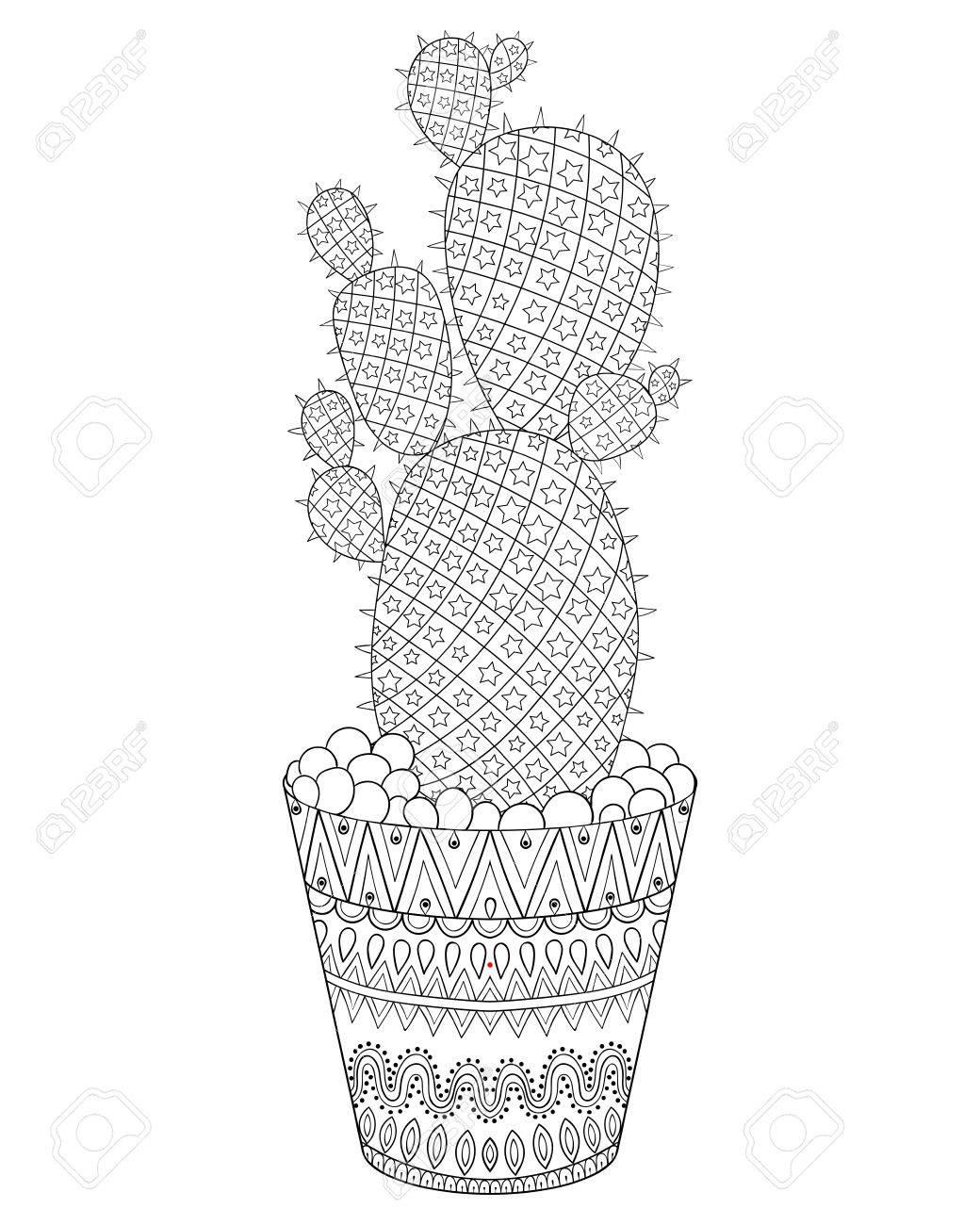 Ilustración De Cactus. Esbozar Textura Del Desierto Planta En El ...