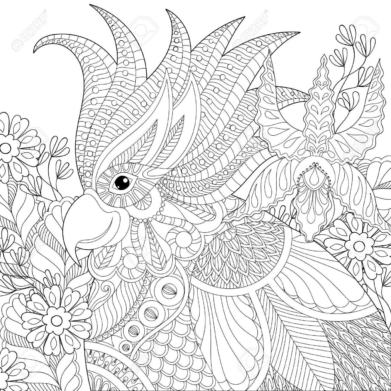 Exotic Zentangle Cockatoo Parrot For Adult Anti Stress Coloring