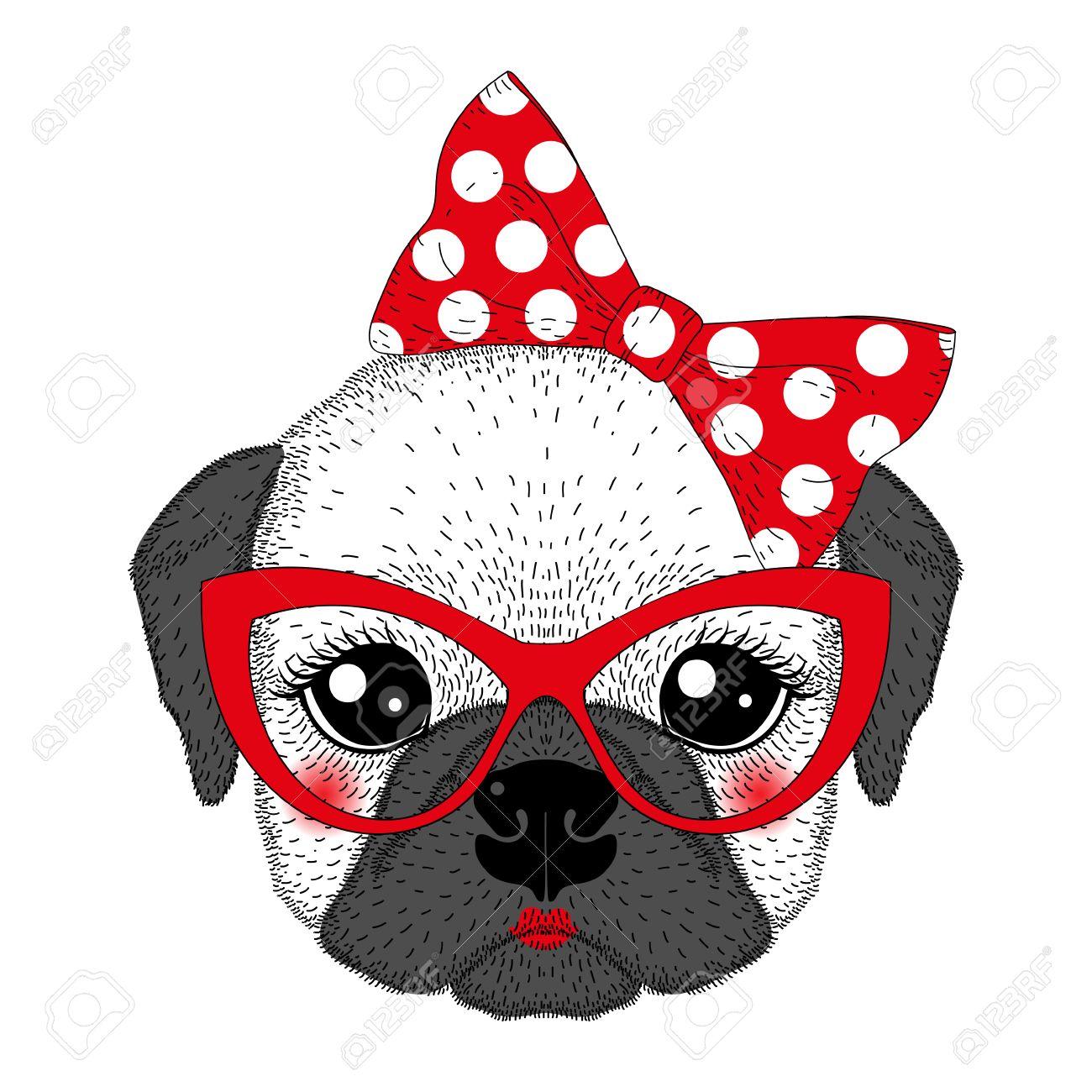 Nette Französisch Bulldog Mädchenportrait Mit Pin Up Fliege, Kat ...