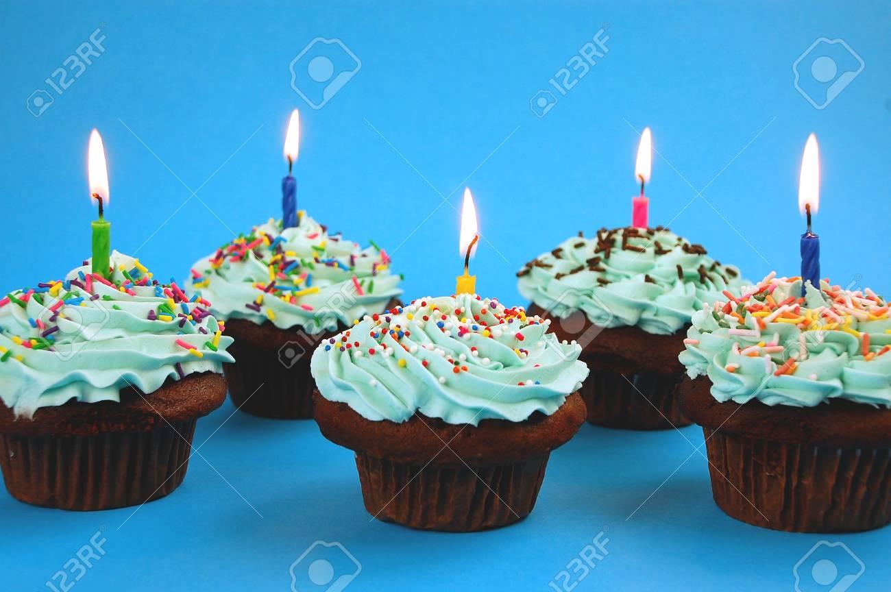 Row of chocolate cupcakes Stock Photo - 3908034
