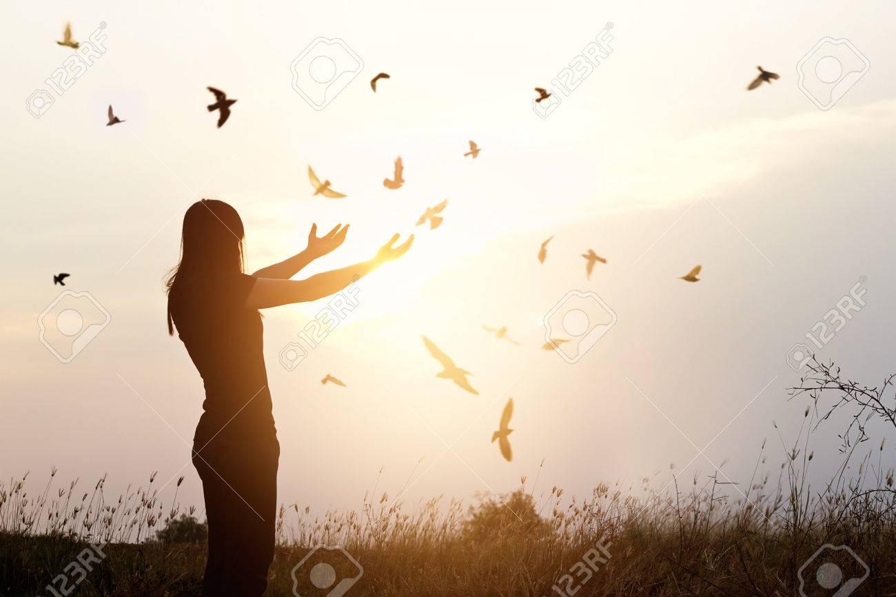 Freedom of life, free bird and woman enjoying nature on sunset background, freedom concept - 60006772