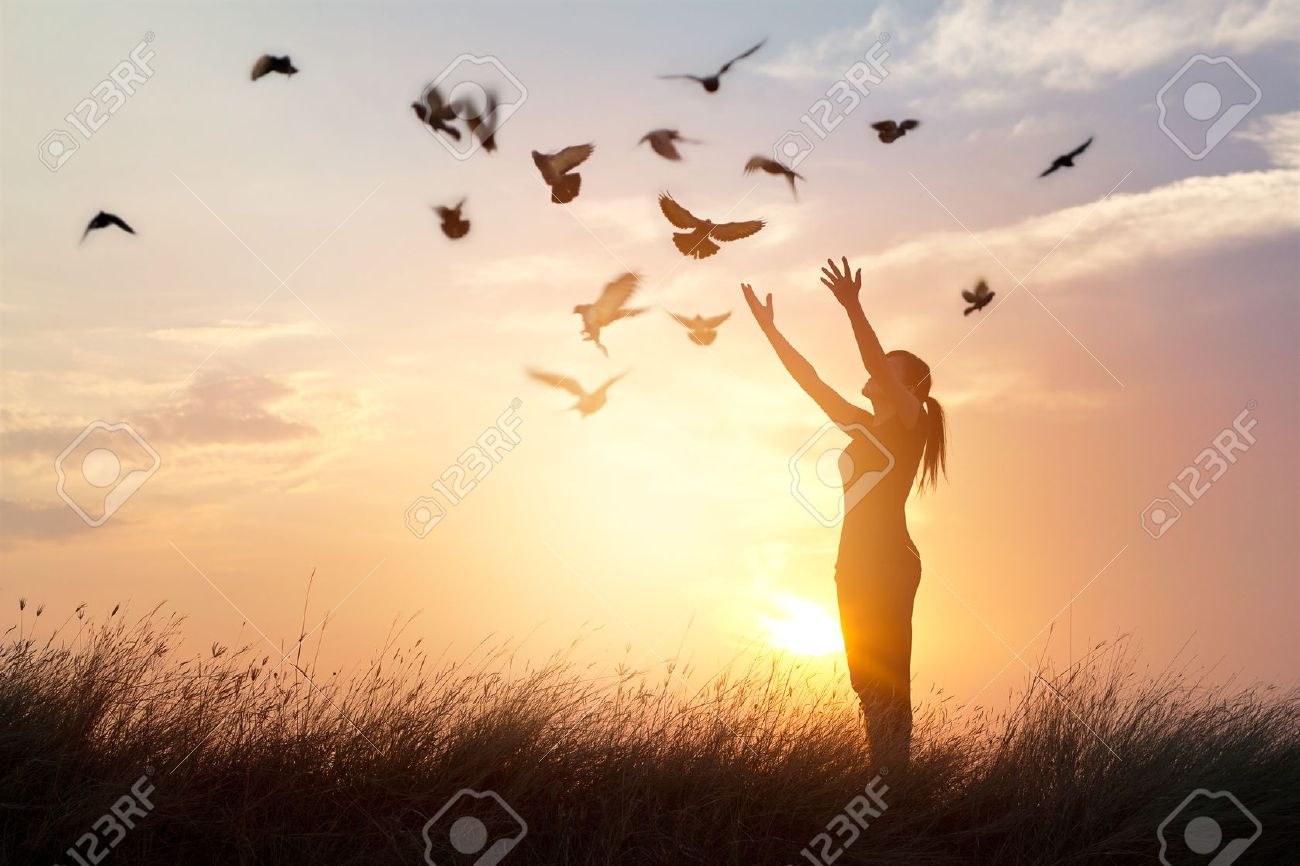 Woman praying and free bird enjoying nature on sunset background, hope concept Standard-Bild - 61706692