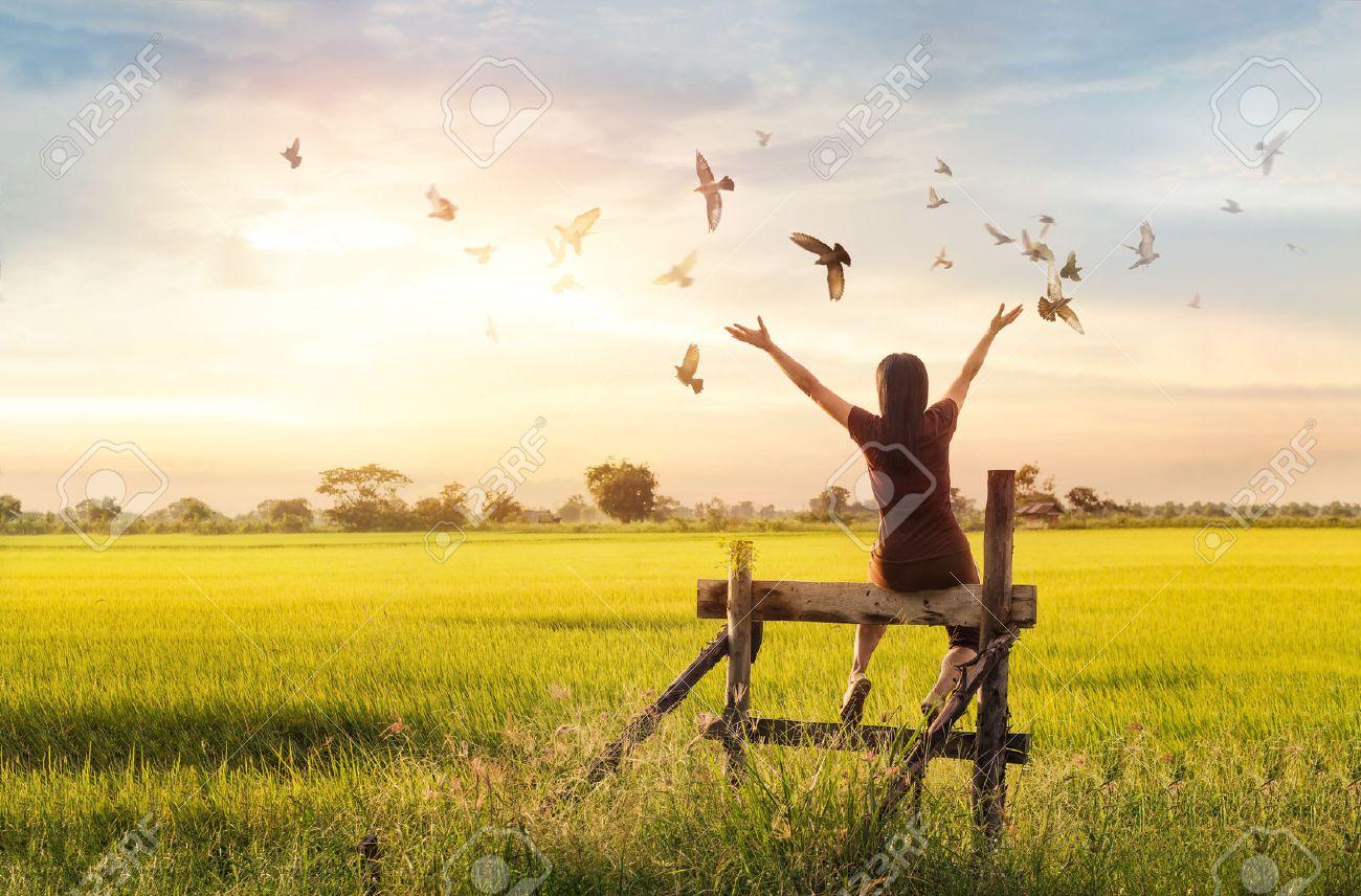 Woman praying and free bird enjoying nature on sunset background, hope concept - 66776390