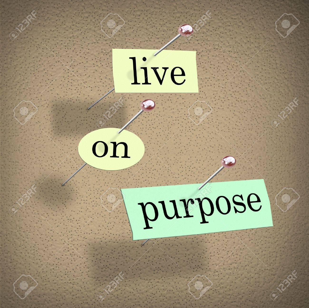 The words Live on Purpose cut out on pieces of paper and pinned to a bulletin board to remind you to live a determined, driven, purpose-filled life Stock Photo - 12583670