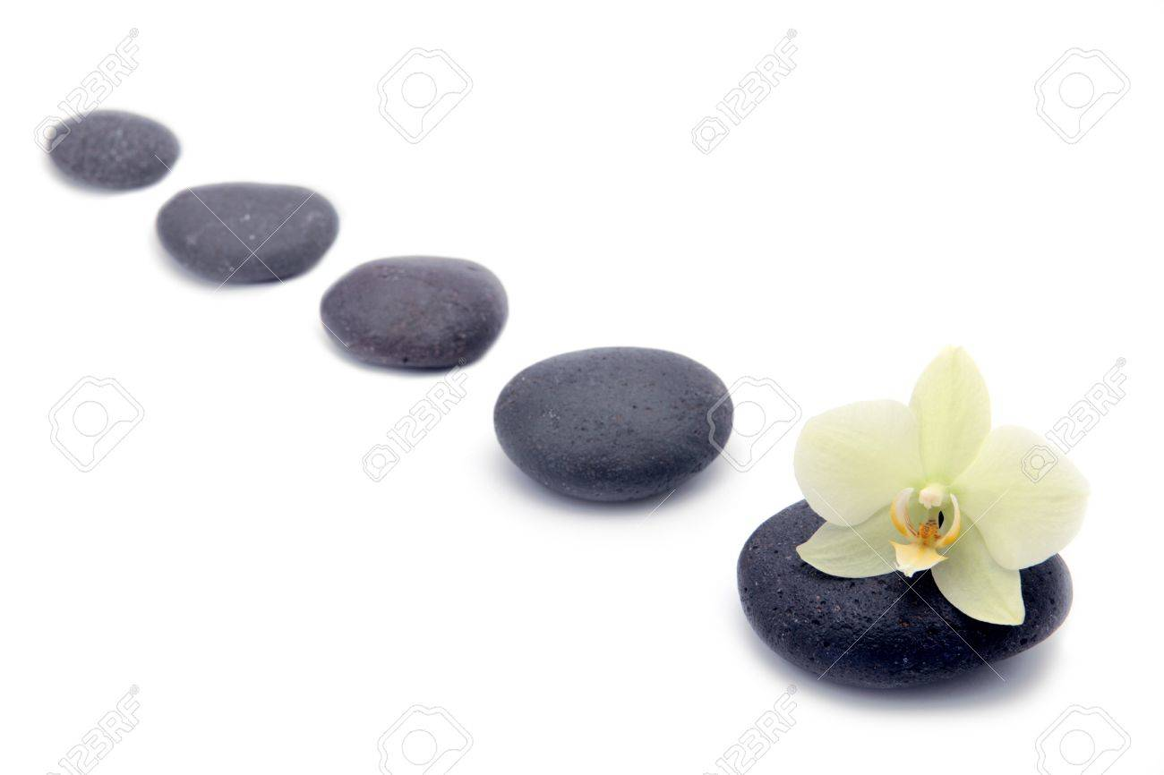 zen stones with orchids flower isolated. spa background - 4544585