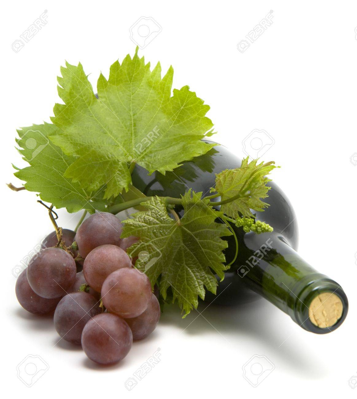 bottle of wine with grape wine leafs and vine - 8661653