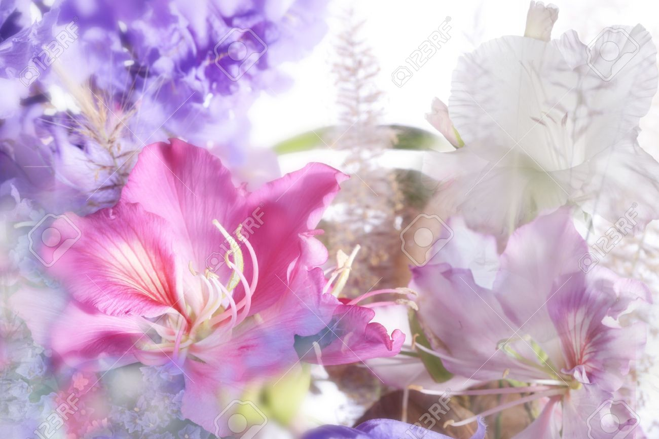beautiful flowers made with soft focus - 9450941