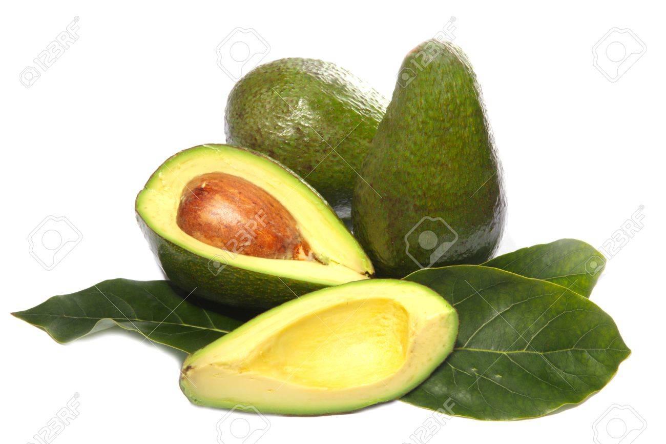 avocado fruit on a white background - 17137424