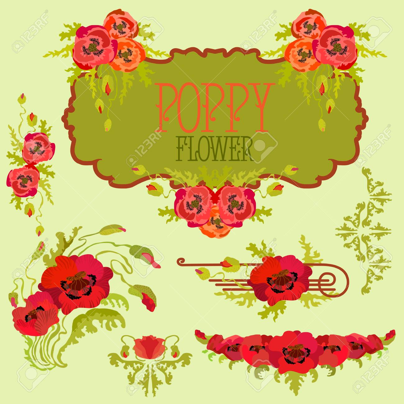 poppy flower template elements set bouquets and garlands and