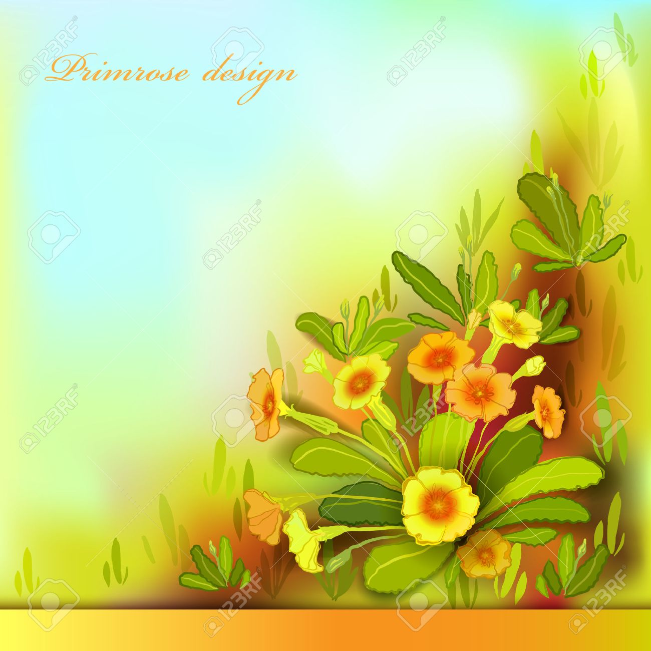 Spring Summer Flowers Yellow Orange Floral Background Horizontal Border Frame With Primroses And