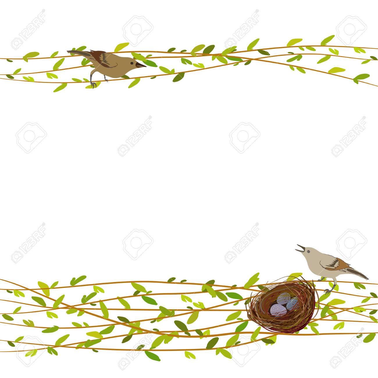Primavera De Fondo Con Ramas De árboles De Sauce, Nido, Aves Y ...