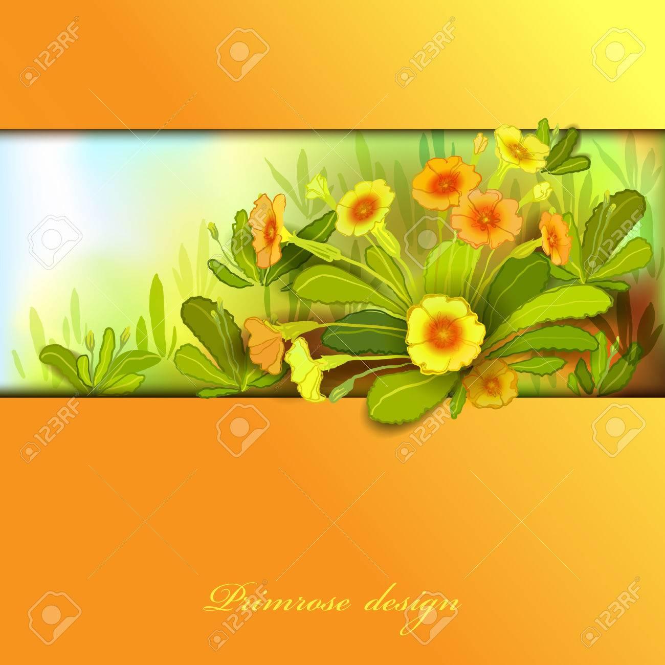 Spring Summer Flowers Yellow Orange Floral Background Horizontal