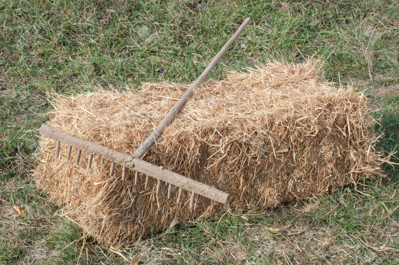 Rake In The Garden, Left Down On A Straw Bale Stock Photo, Picture ...