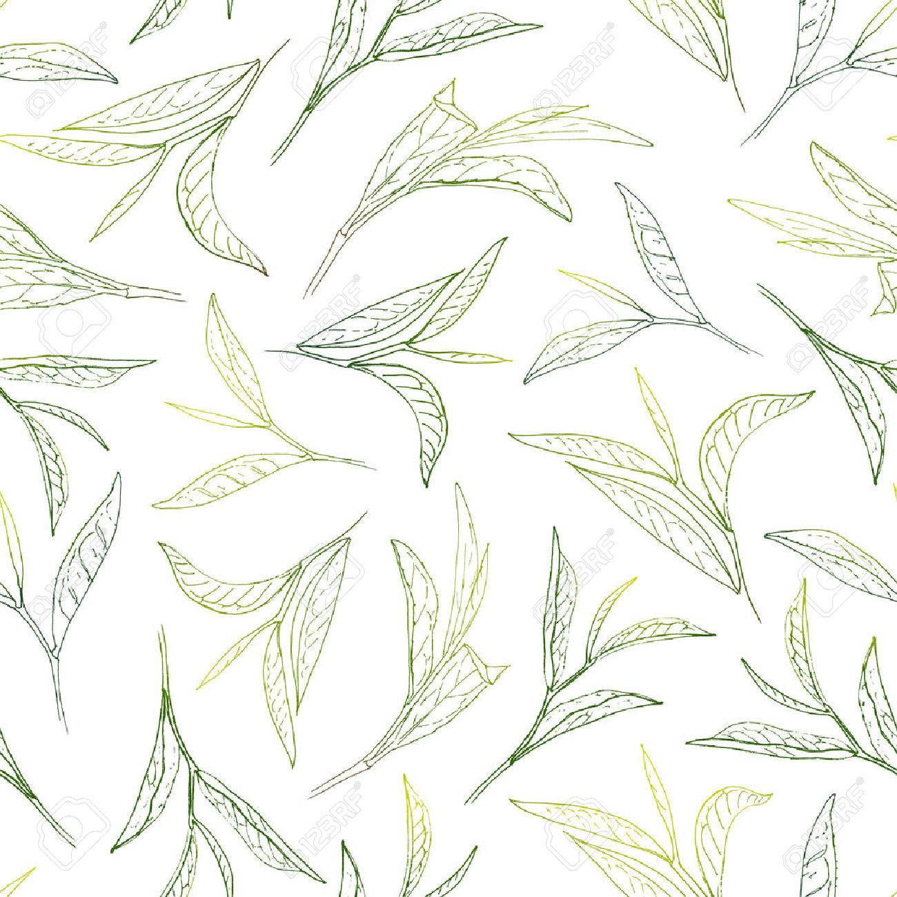 Sunny tea leafs. Hand-painted seamless pattern - 57221161
