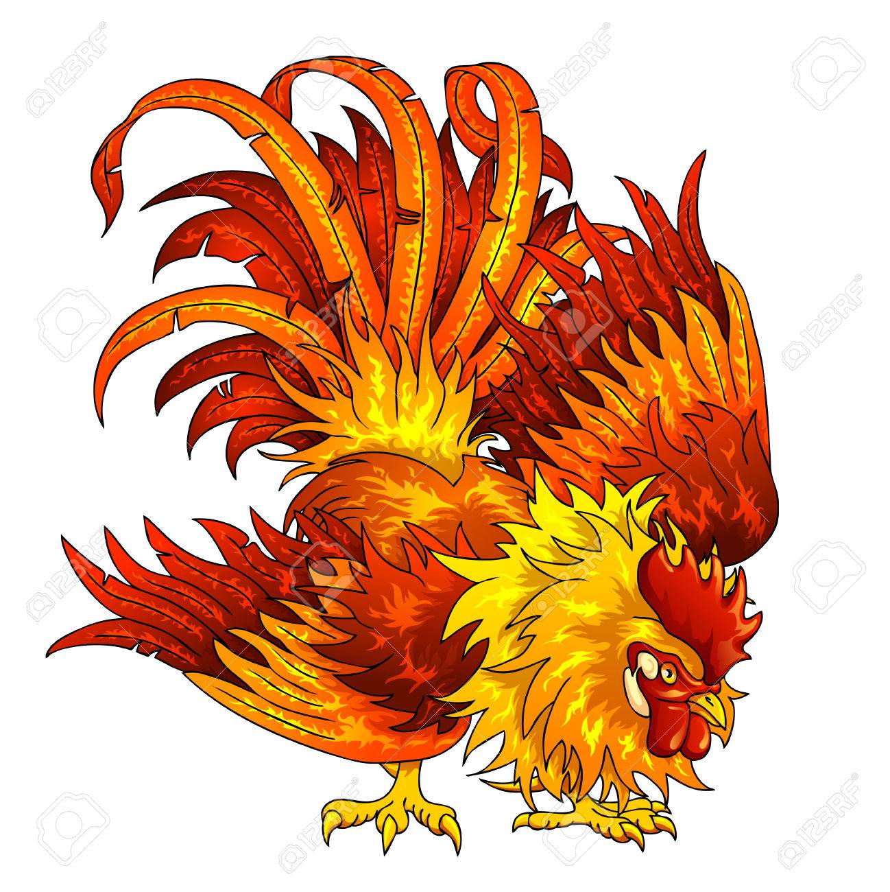 fighting orange red rooster on a white background a symbol of