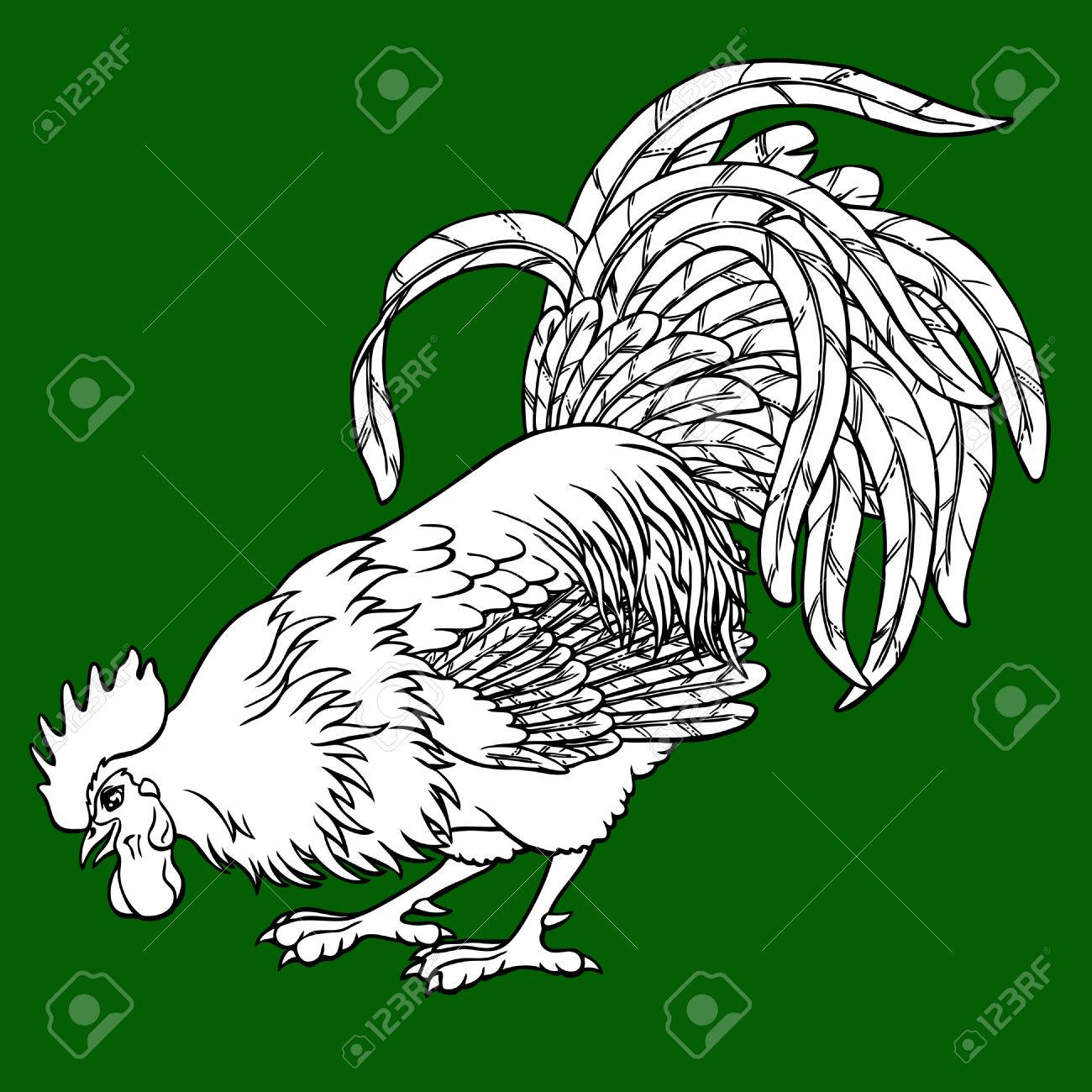 Calling Rooster Coloring On Green Background. Decorative Chicken ...