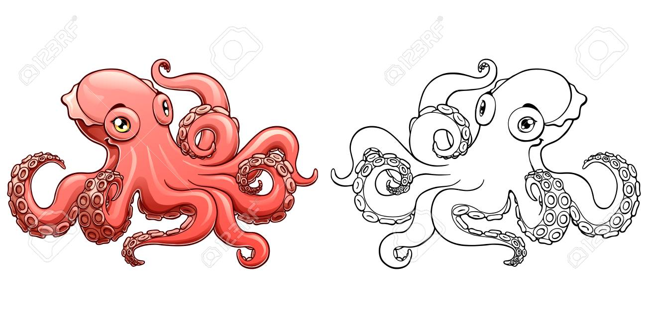 Octopus Colorful And Contour Vector Illustration Royalty Free ...