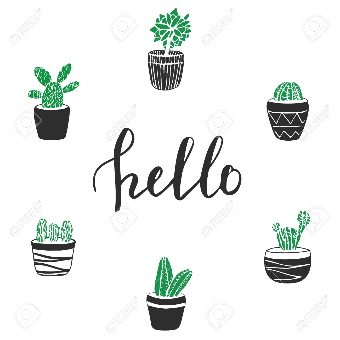 6250e7658 Vector - Vector cactus illustration with lettering Hello. Cute hand drawn  green cacti in pots for poster, card, cover, bag and t-shirt print.