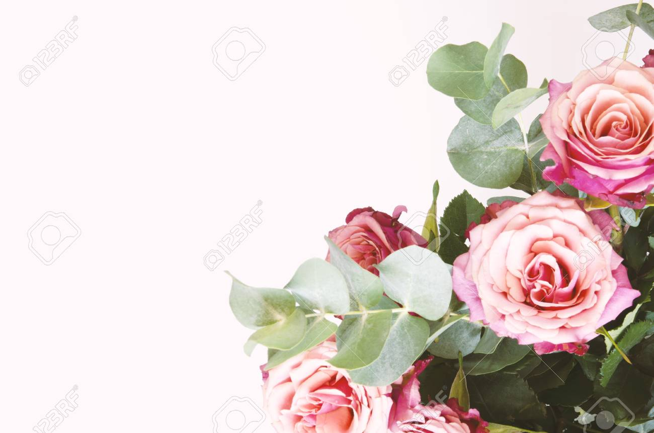 Flowers composition. Roses flowers and branch eucalyptus on white background. Top view, copy space. - Image - 120985321