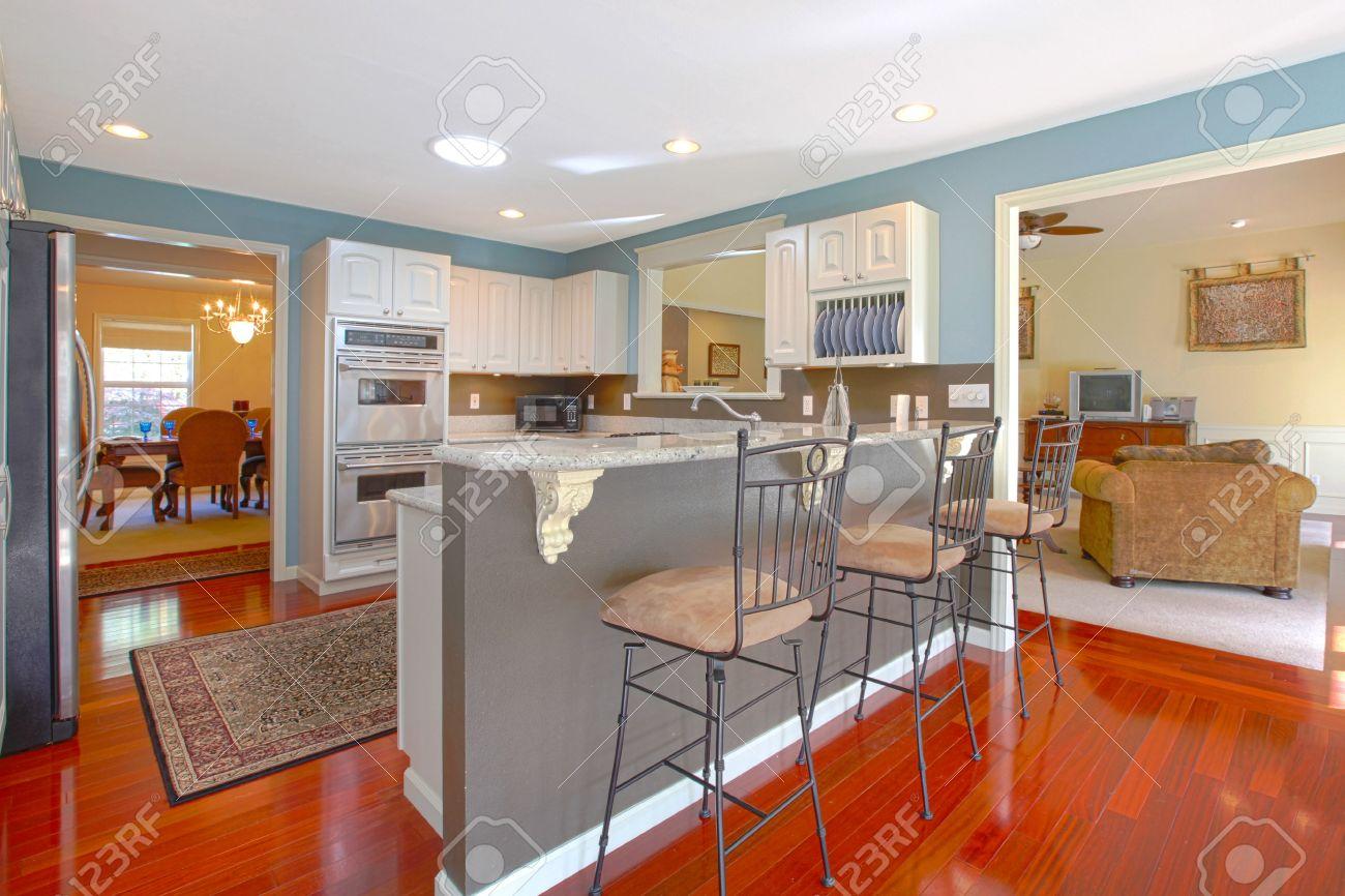 Küche mit bar und wohnzimmer lizenzfreie bilder 12313859