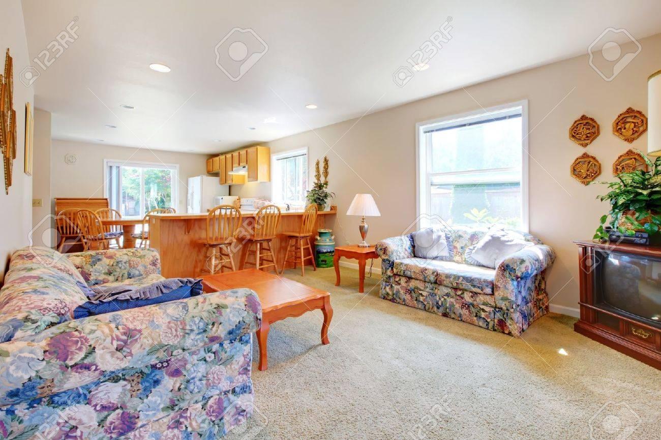 Einfache Weiße Lange Wohnzimmer Mit Küche Und TV. Lizenzfreie Fotos ...