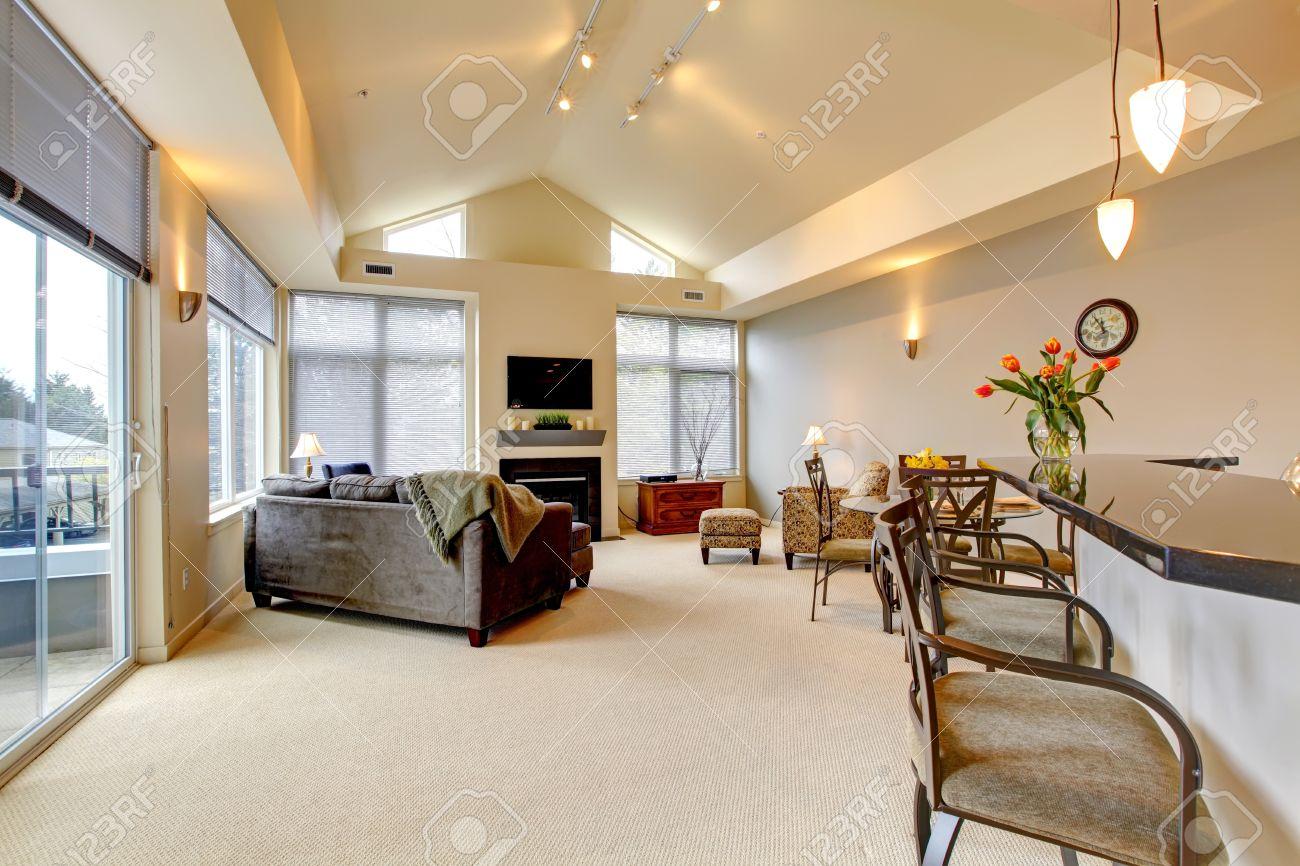 Großes, modernes luxus apartment wohnzimmer mit küche bar ...