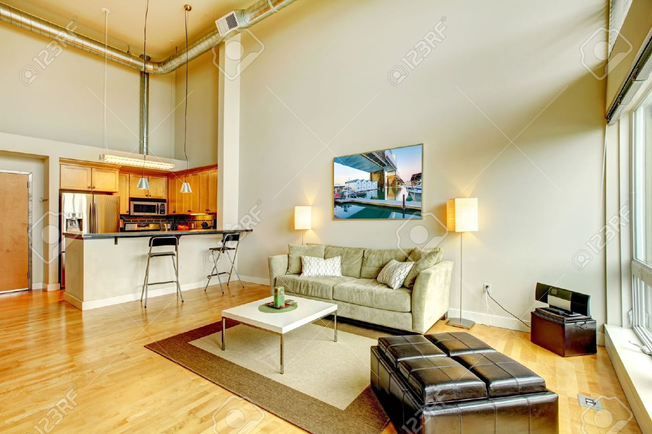 modern loft apartment living room interior with kitchen and high