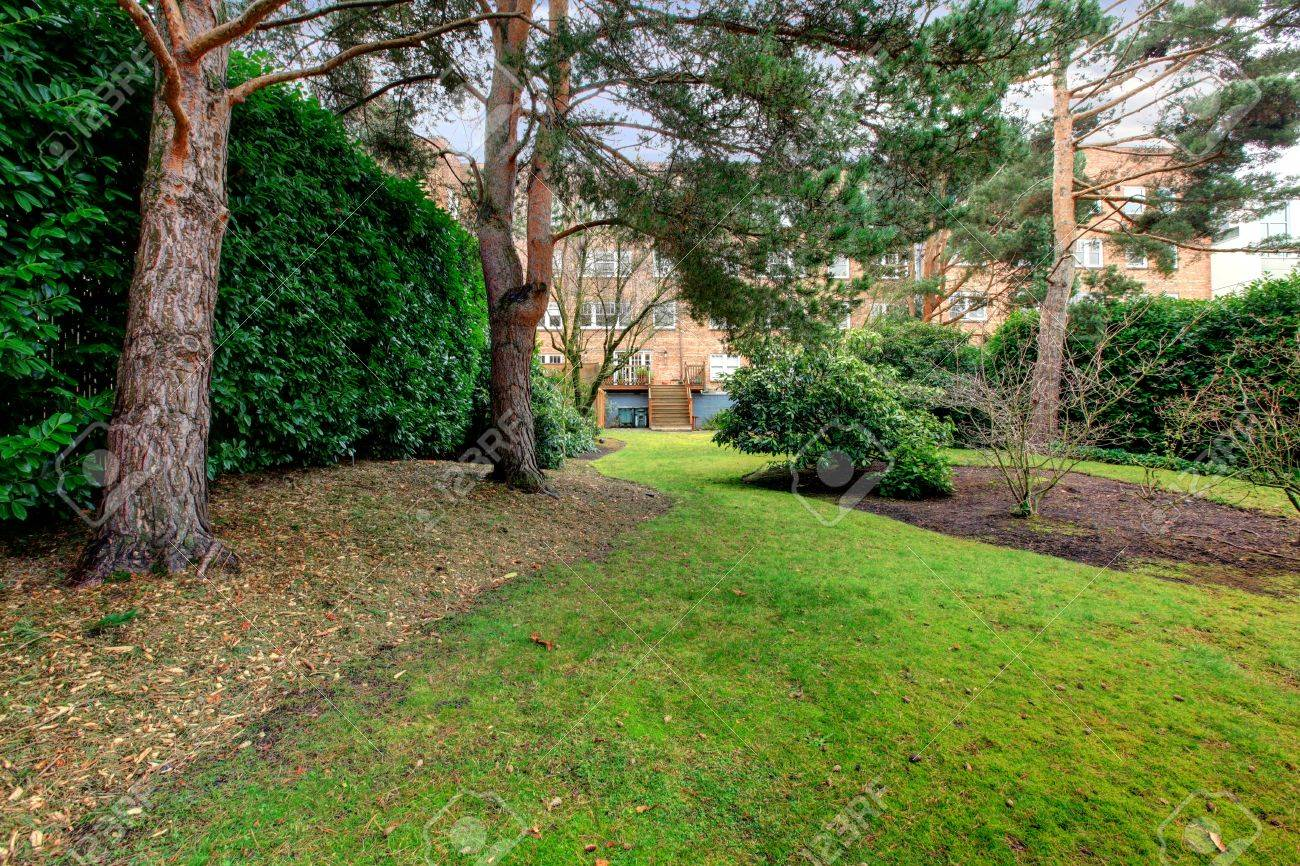 Backyard Apartment backyard of large brick apartment building with pine trees and