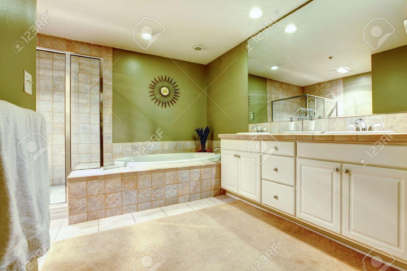 cuarto de bao verde y blanco con dos lavabos y un armario foto de archivo