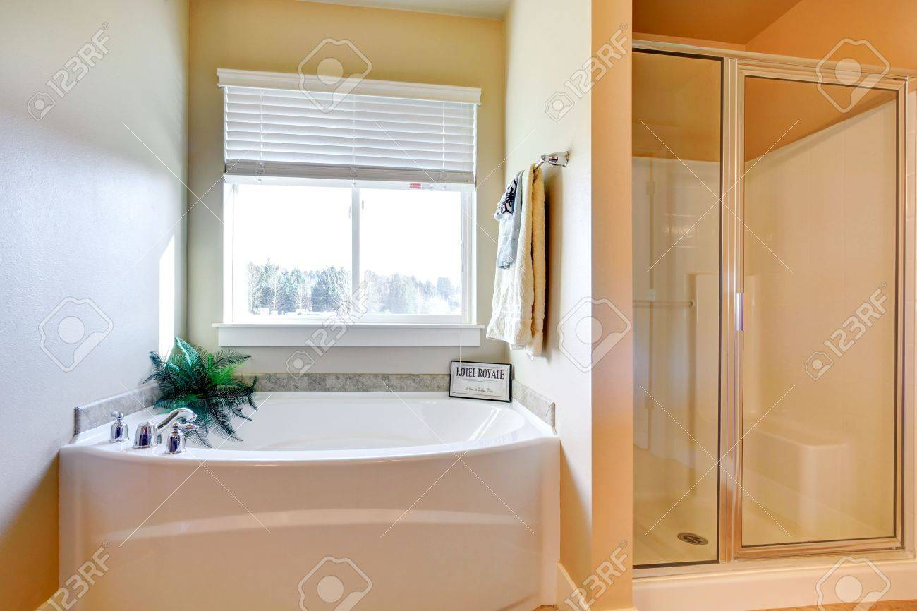 cozy bathroom with glass door shower stall and bath tub stock cozy bathroom with glass door shower stall and bath tub stock photo 25668316