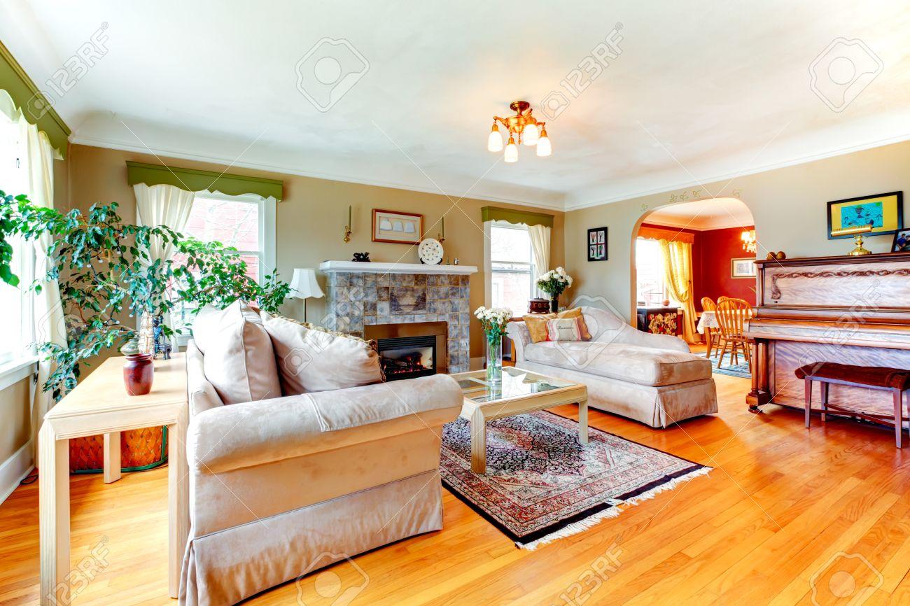 Luminoso soggiorno accogliente con pavimento in legno e tappeti ...