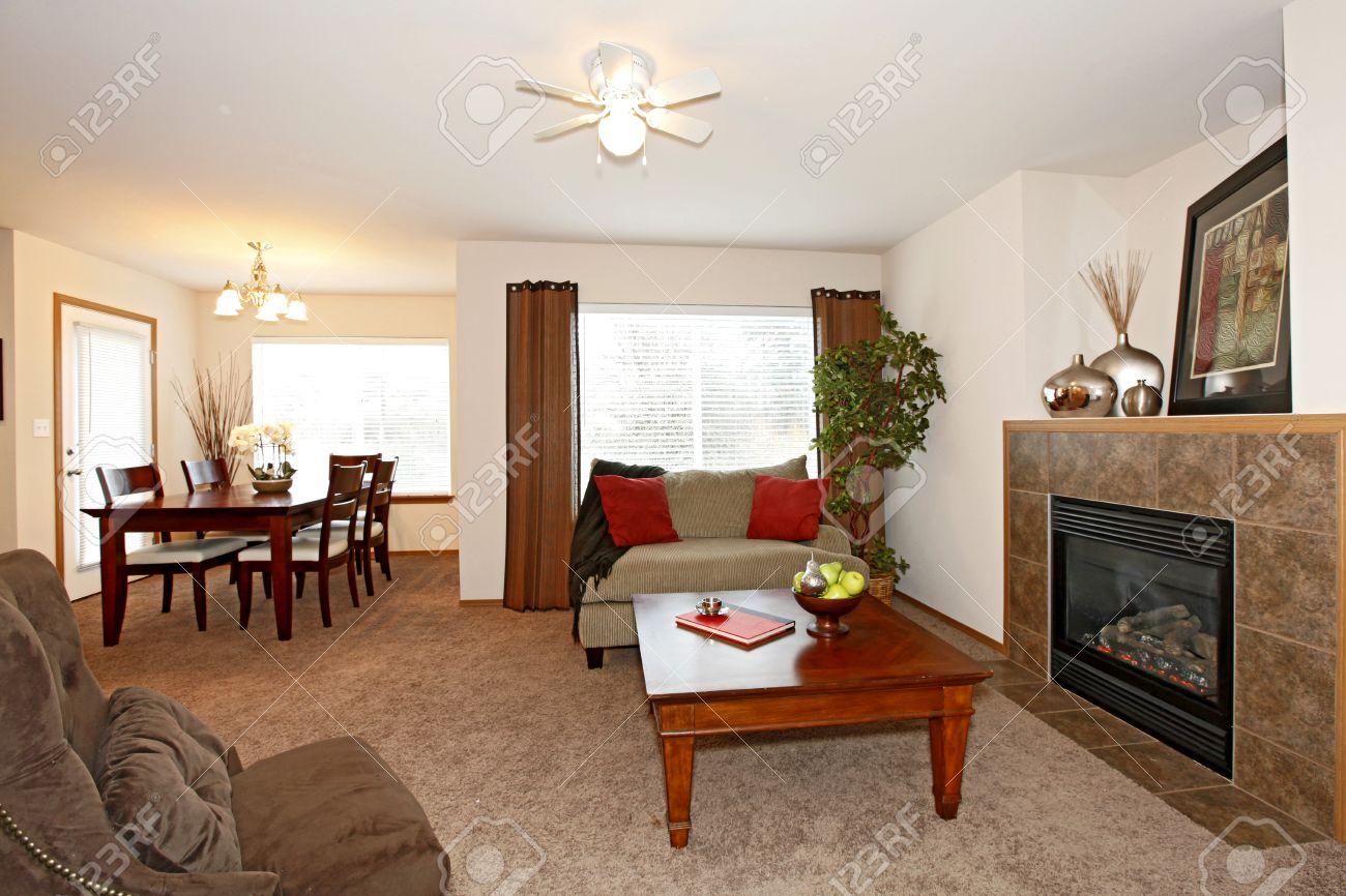 Murs clairs meublées salon avec une cheminée et de la moquette ...