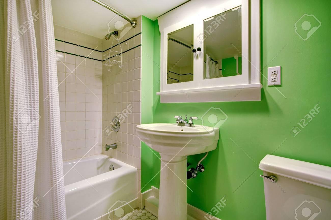Grünes Badezimmer Mit Weißen Waschbecken Stand, WC Und Badewanne ...