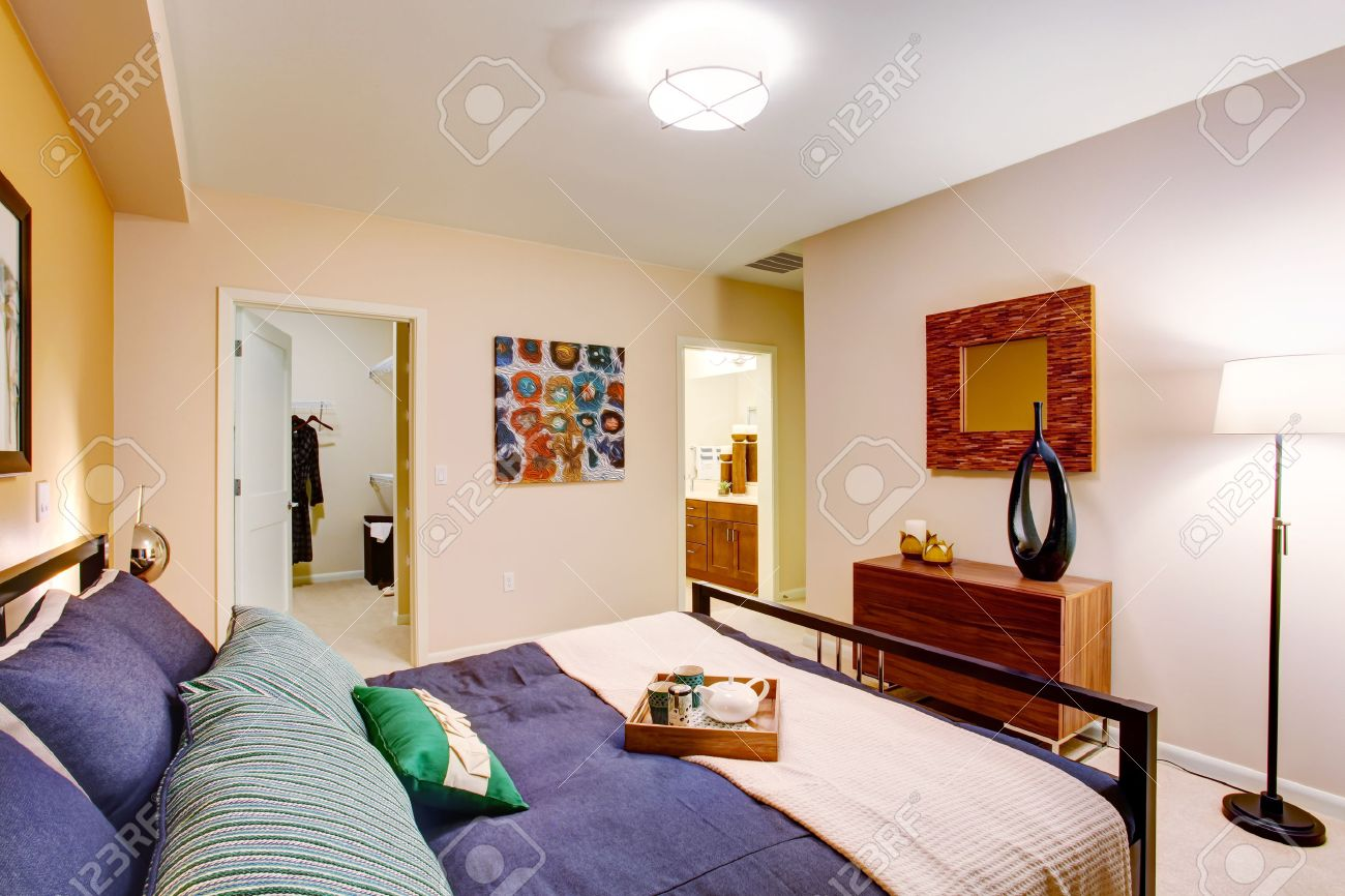 . Modern master bedroom with walk in closet and bathroom View