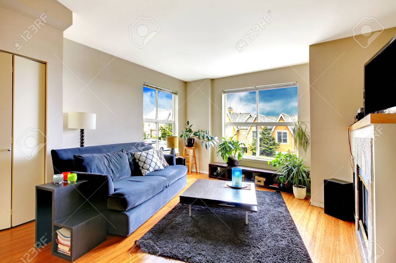 Living room with navy sofa, coffee table and soft rug. View of..