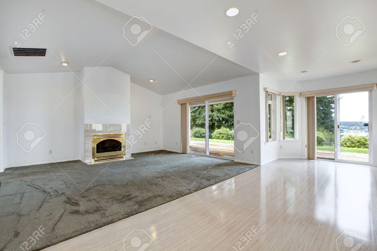 House Open Floor Plan.. Bright Empty Living Room With Fireplace In Gold And  Olive