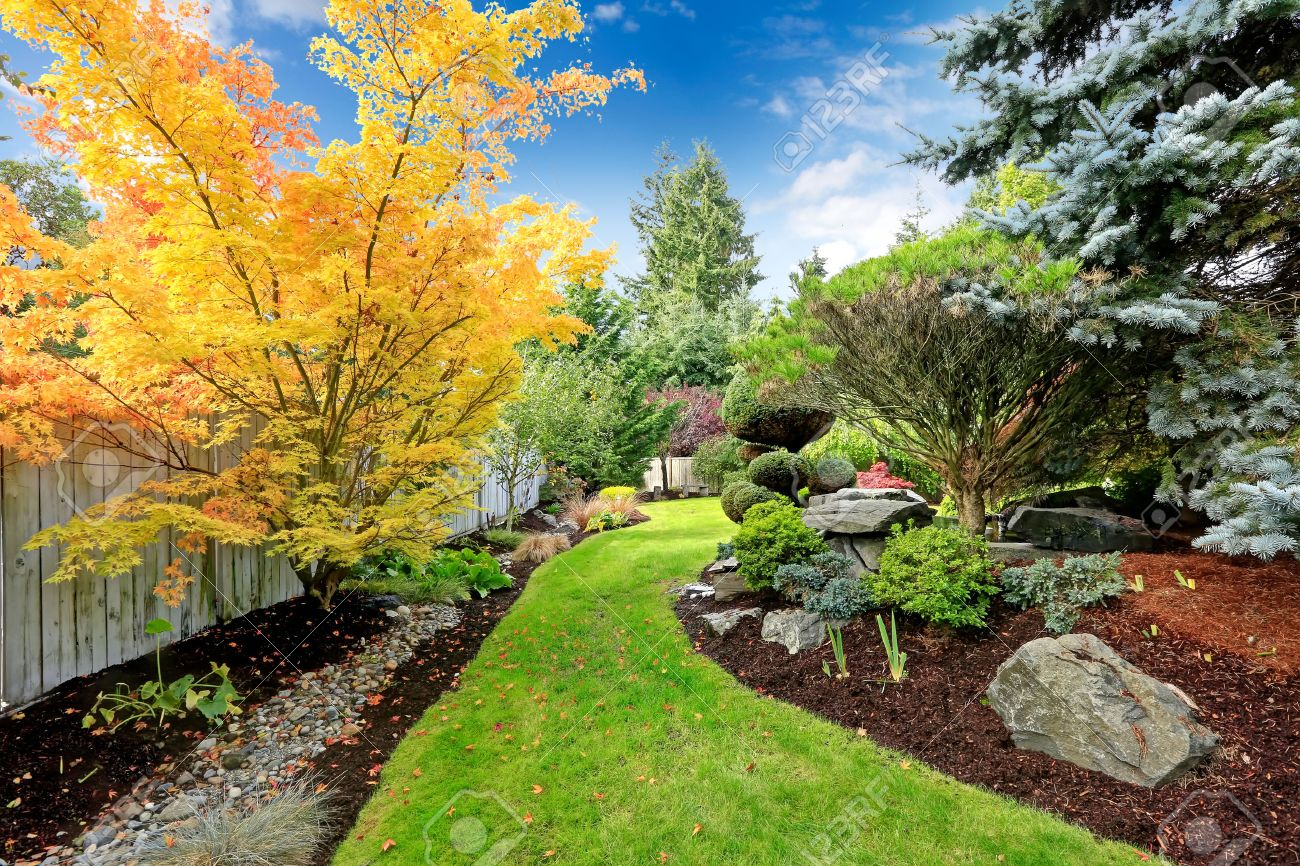 Beautiful Backyard Landscape Design View Of Colorful Trees And ...