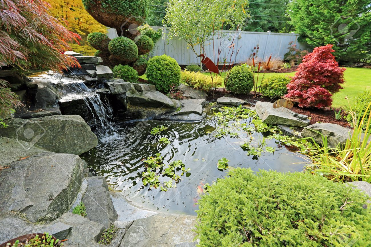 Tropical landscape design on backyard. View of small pond, trimmed bushes and small waterfall - 29667027