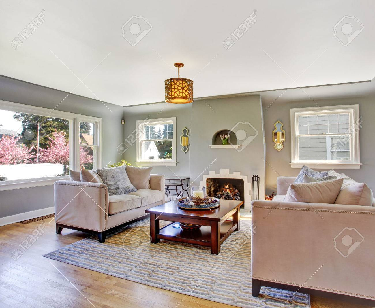 Light Grey Living Rom With Hardwood Floor And Rug Furnished Stock Photo Picture And Royalty Free Image Image 30051358