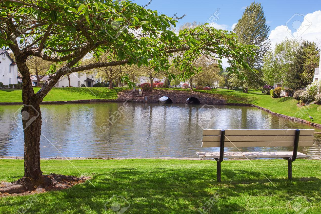 residential complex backyard garden with pond trees and sitting