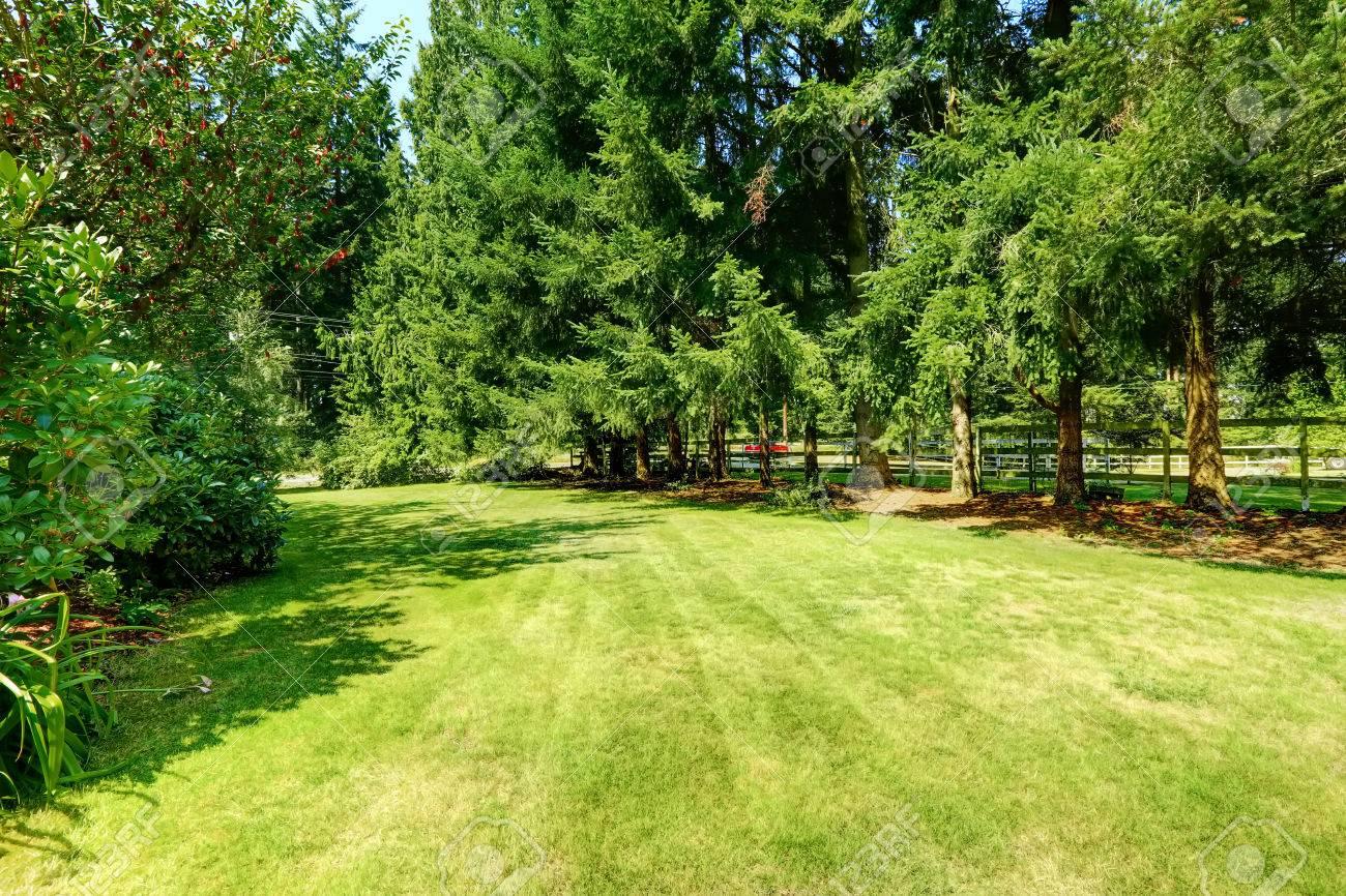 Grünen Hinterhof. Landschaft Landschaft Im Sommer In Puyallup, Washington  State Standard Bild