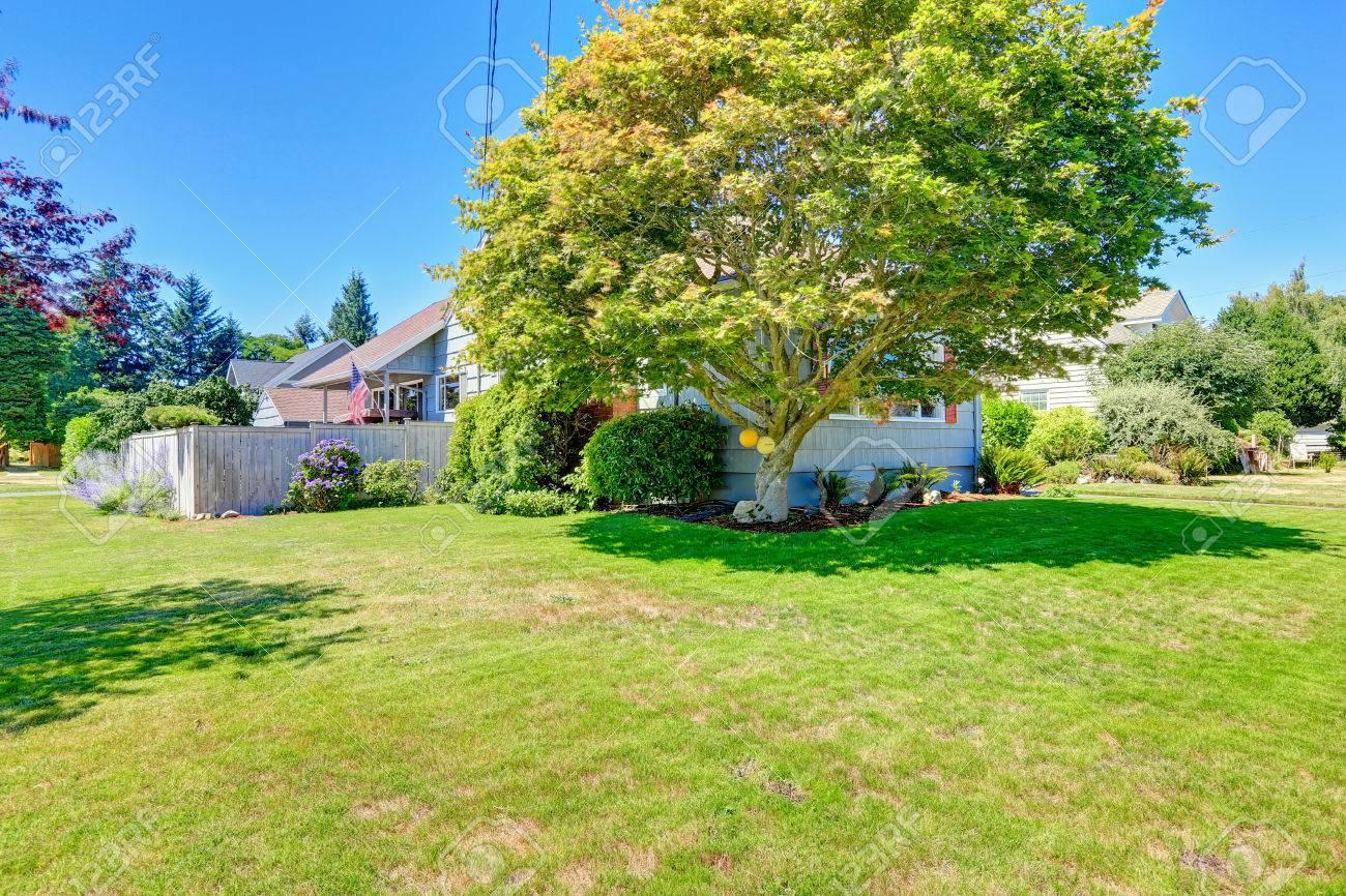 Einfaches Haus Außen Mit Vorgarten Und Ahorn-Baum Lizenzfreie Fotos ...