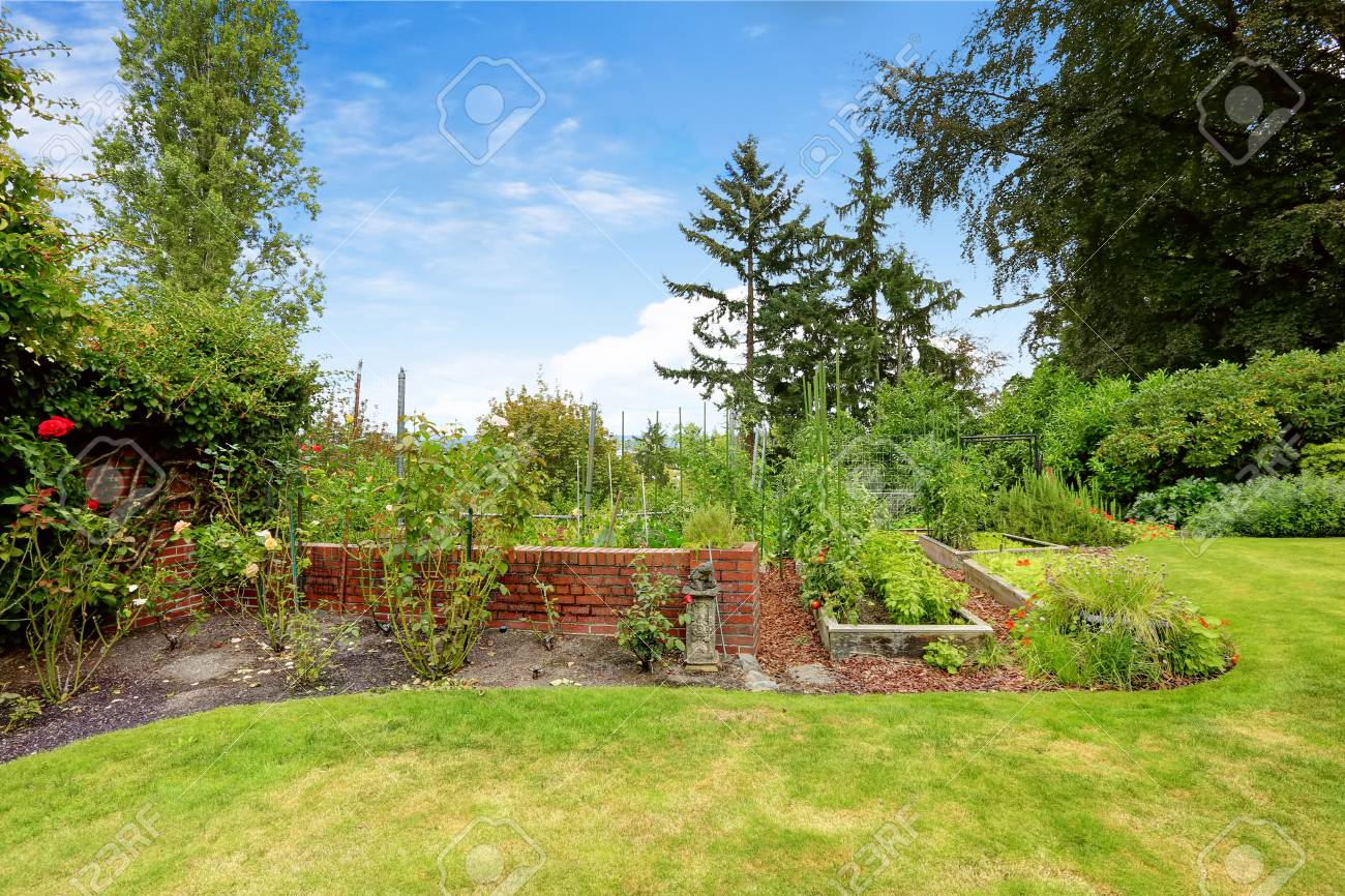 Backyard With Garden Bed And Brick Wall With Flower Bed Alongside