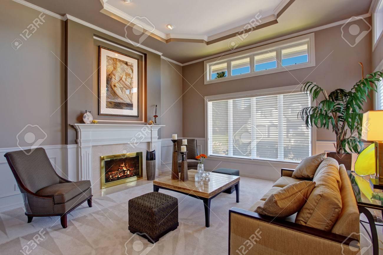 Luxe gezellige woonkamer met open haard, bruine bank en palmboom ...