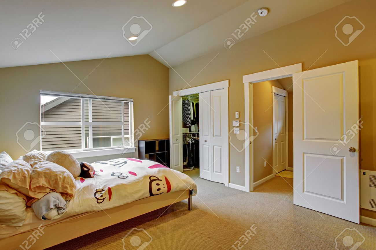 Cozy Bedroom With High Vaulted Ceiling And Walk In Closet. Light ...