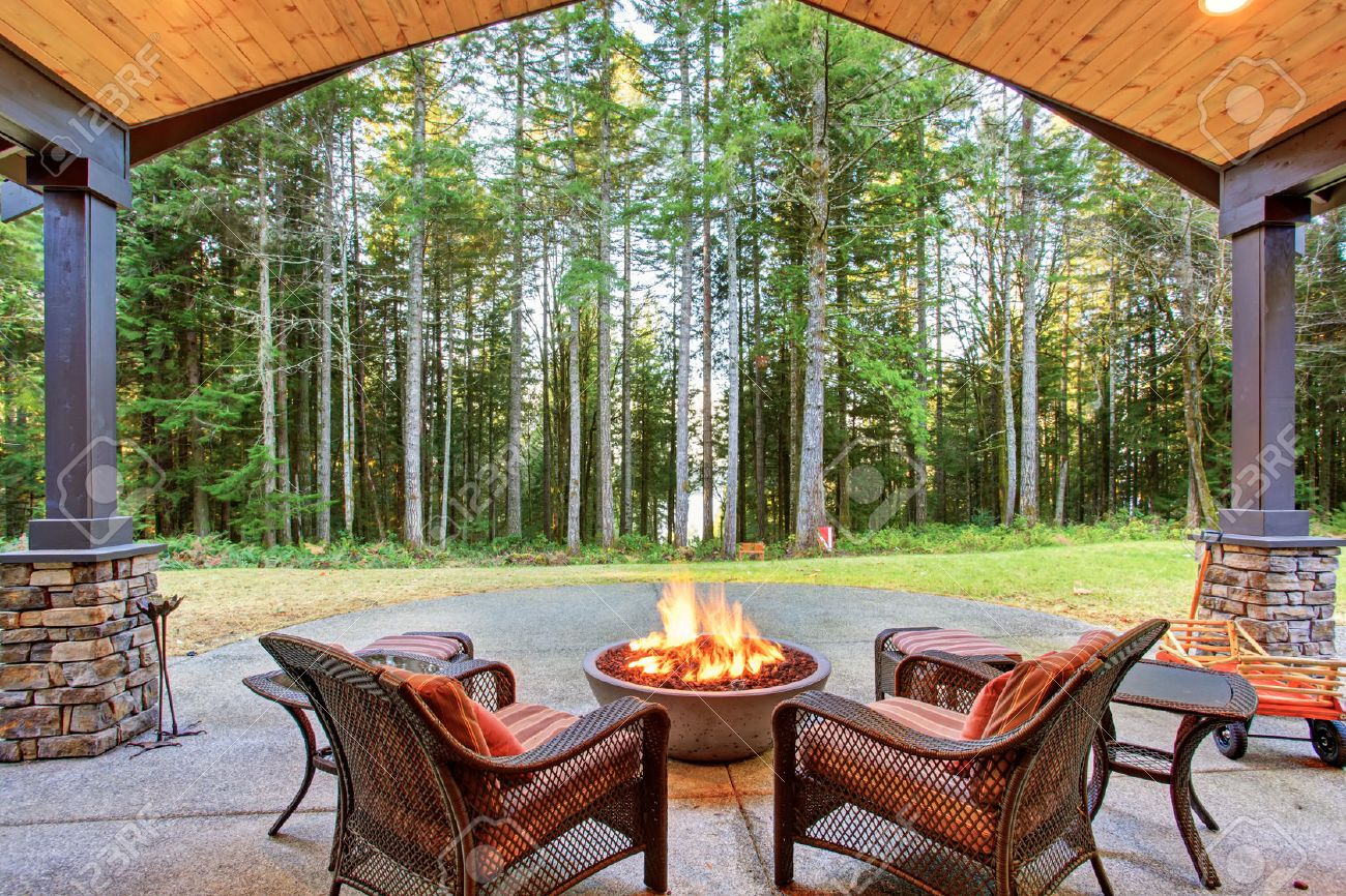 Back Door: Large Back Yard With Grass And Covered Patio With Firepit.